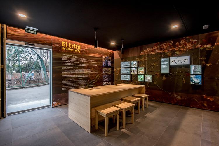 Un nou espai per a la conservació del Tritó del Montseny